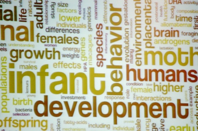 A collage of words presented at the AAAS conference in Chicago Saturday illustrates the many factors involved in early human development.