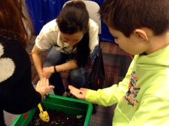 """Johnathan Kristoff, 10, checks out worms at the Chicago Botanic Garden's booth. Shamra Fallon, of the botanic garden, says that sometimes the worms get too squirmy so the kids drop them, but """"they're invertebrates, so they can't break anything."""""""
