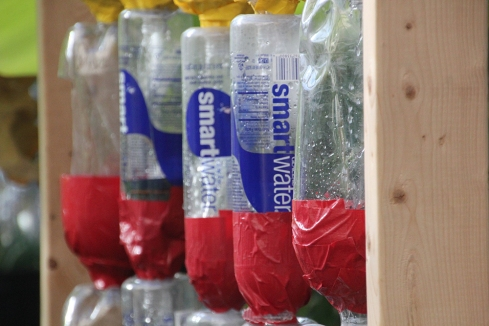 A new aquaponics system that was just put up at Lindblom Math and Science Academy in Chicago, Ill. (Anne Evans/MEDILL)
