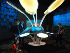 Numbers in Nature: A Mirror Maze takes you on a tour of recurring patterns in nature through interactive installations. The news permanent exhibit opened this week at the Museum of Science and Industry.